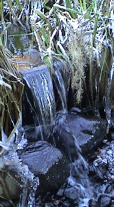 Water flowing from pond